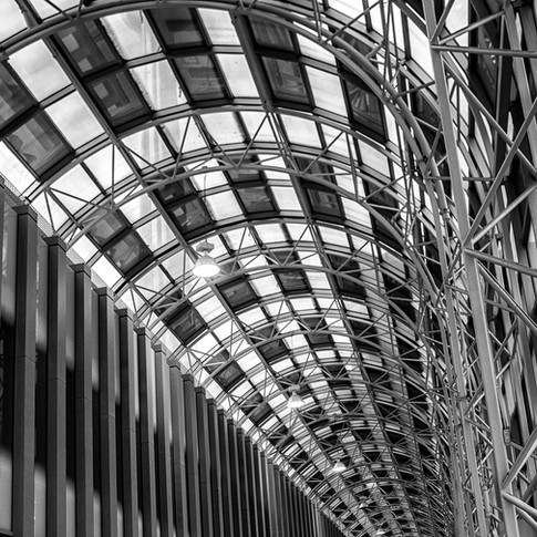 Lines & Curves