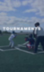Tournaments, Turf Baseball Field, Softball Field, Outdoor Field
