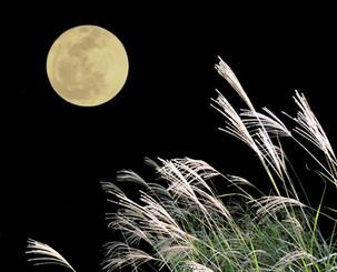 中秋の名月、今年は9月24日