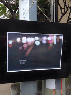 malamute(マラミュート) 2015-16 A/W