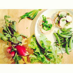 Lunch today is farm fresh! Radishes, let