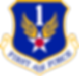 1st_Air_Force.png