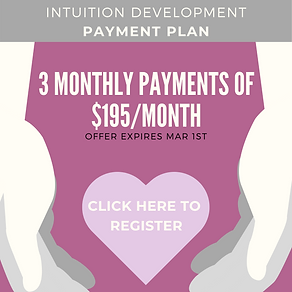 INTUITION PAYMENT PLAN.png