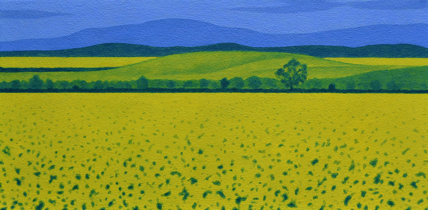 Fields of Gold (Perthshire)