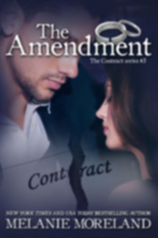 The Amendment - ebook.jpg