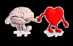 coeur-cerveau.png