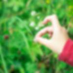 markus-spiske-yLE86o_LsaY-unsplash.jpg