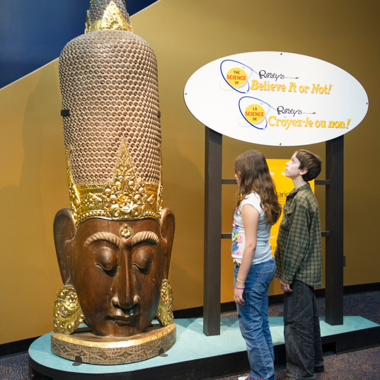 The Science or Ripley's Believe It or Not!® - 002