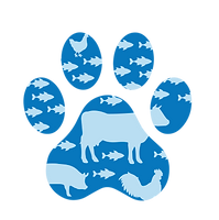 Website Infographics__Paw Print.png
