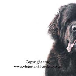 Uschi Victoria Willcocks