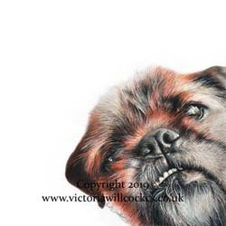 Winky Victoria Willcocks