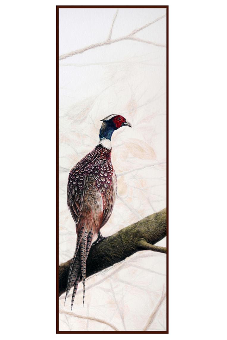 Pheasant ii a.jpg