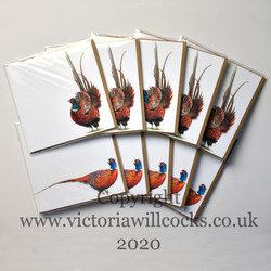 Pheseant Cards Victoria Willcocks