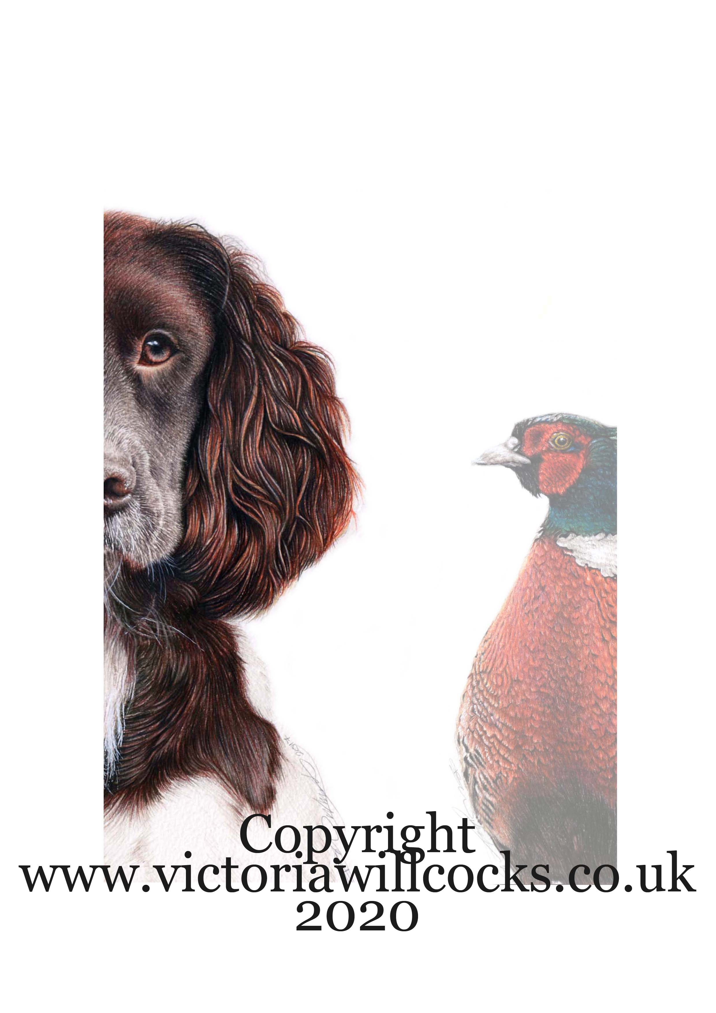 Spaniel and Pheseant Victoria Willcocks.