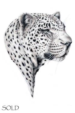 Leopard ii s