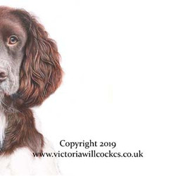W Pheasant and Springer Victoria Willcoc