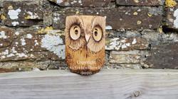 Oak Owls Victoria Willcocks P Neal (3)