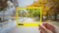 Beginner Nikon Digital SLR (DSLR) Photography ecourse