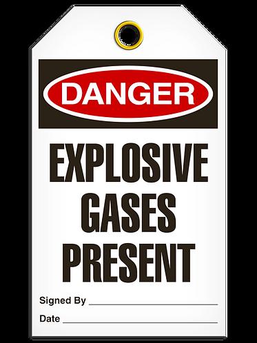 DANGER  -  Explosive Gases Present