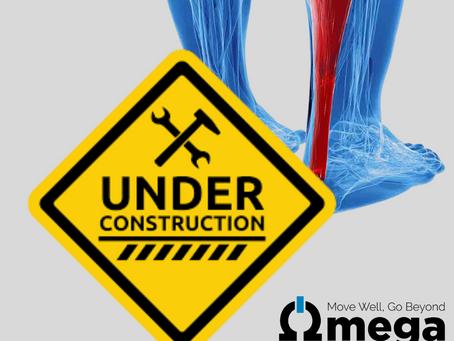 Injury Rehab Progression - Tendon Healing