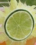 Margarita-Garnish-Ideas-Sun-From-Lime.jp