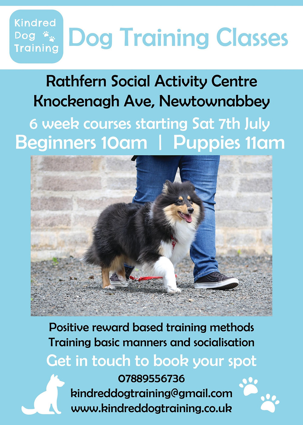 Puppy training classes, dog training classes Newtownabbey Co Antrim Northern Ireland