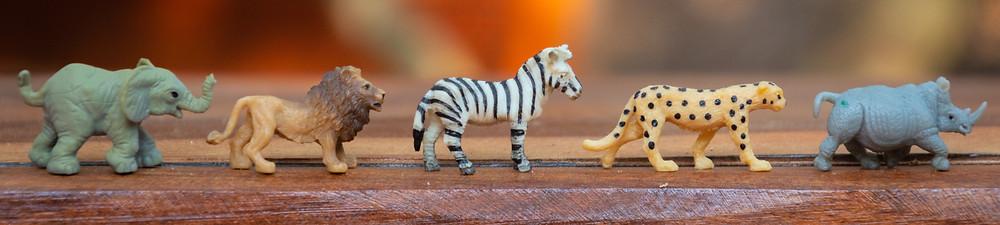 A row of jungle animal figurines: elephant, lion, zebra, cheetah, rhino
