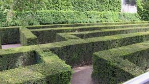 Verirrt im Labyrinth der Rechtssysteme