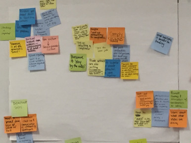 Affinity mapping of Say/Do/Think/Feel