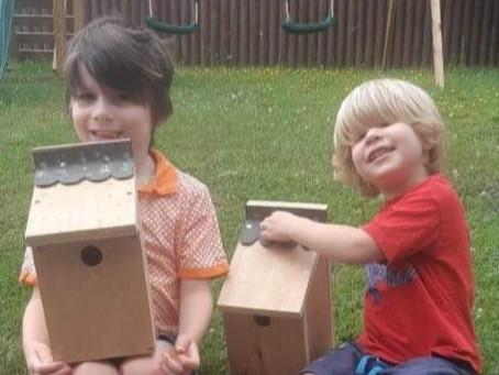 How About A Bird Box?