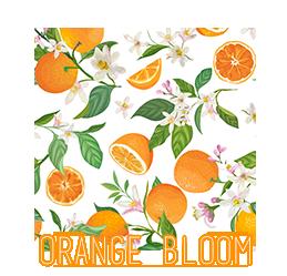 FABRIC-CIRCLE-2020-orangebloom.png