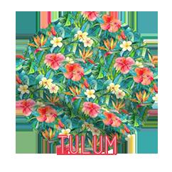 fabric-tulum.png