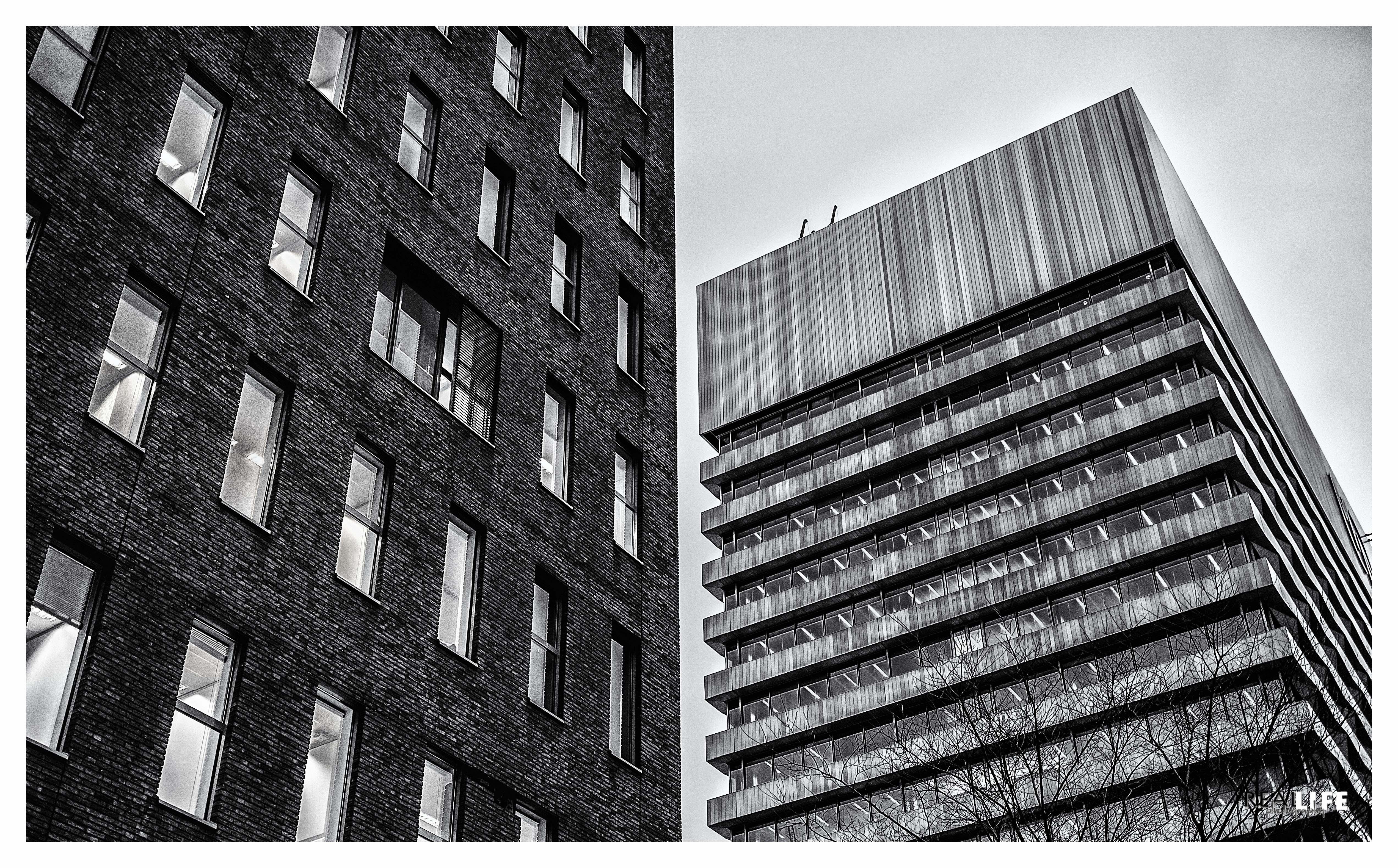 black&white-3
