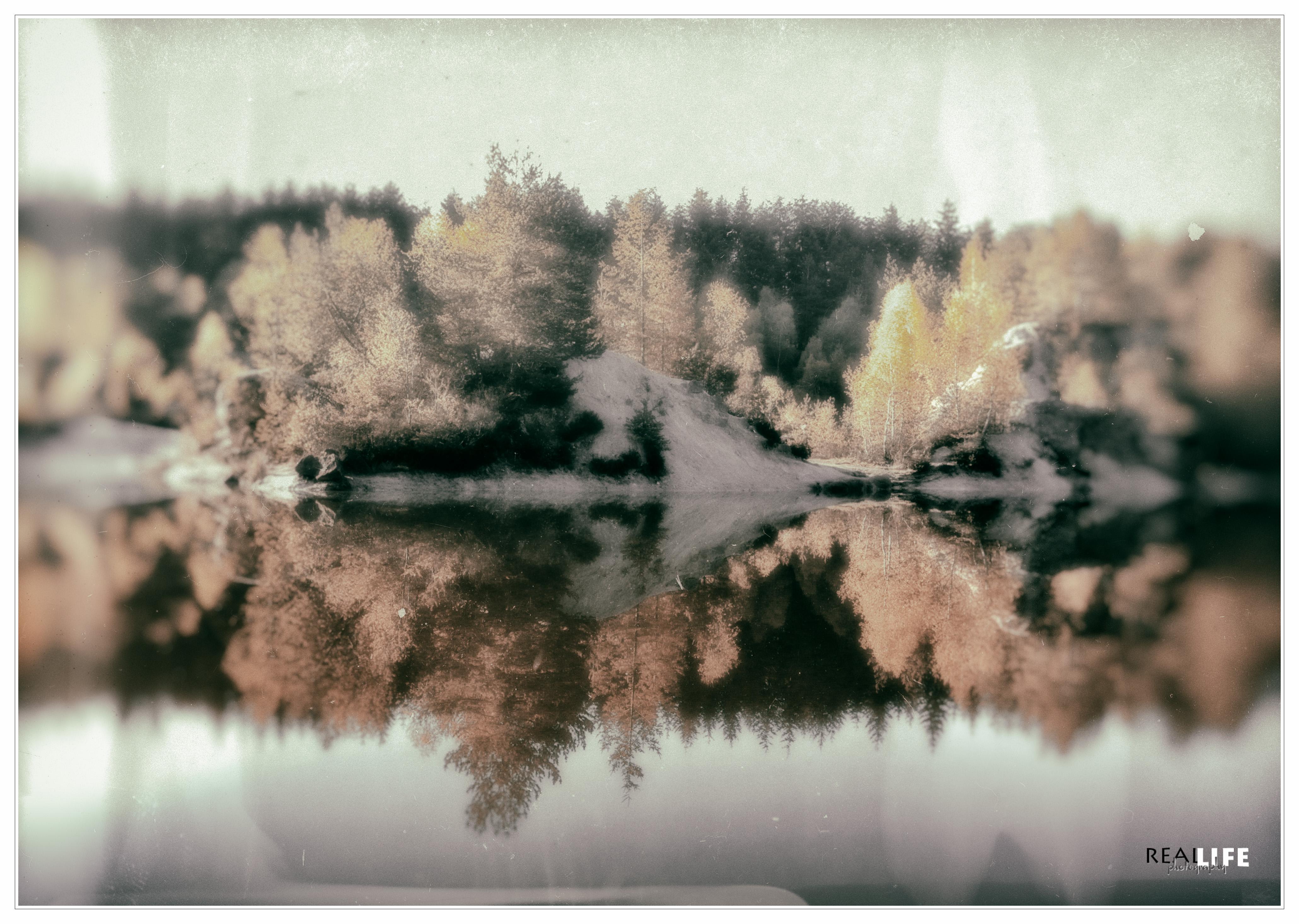 nature photo-11