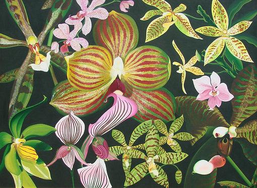Danse des Orchidées/Giclée/Canvas Painting/Reproduction