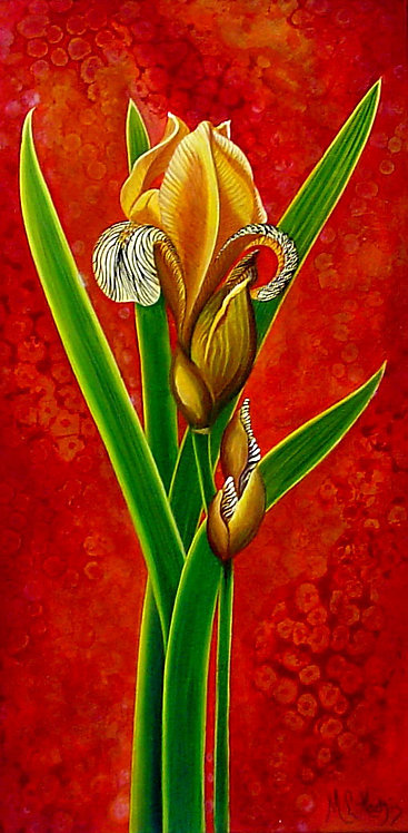Golden Iris/ Canvas painting/reprofuction/Giclee