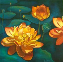 Lotus Fiesta