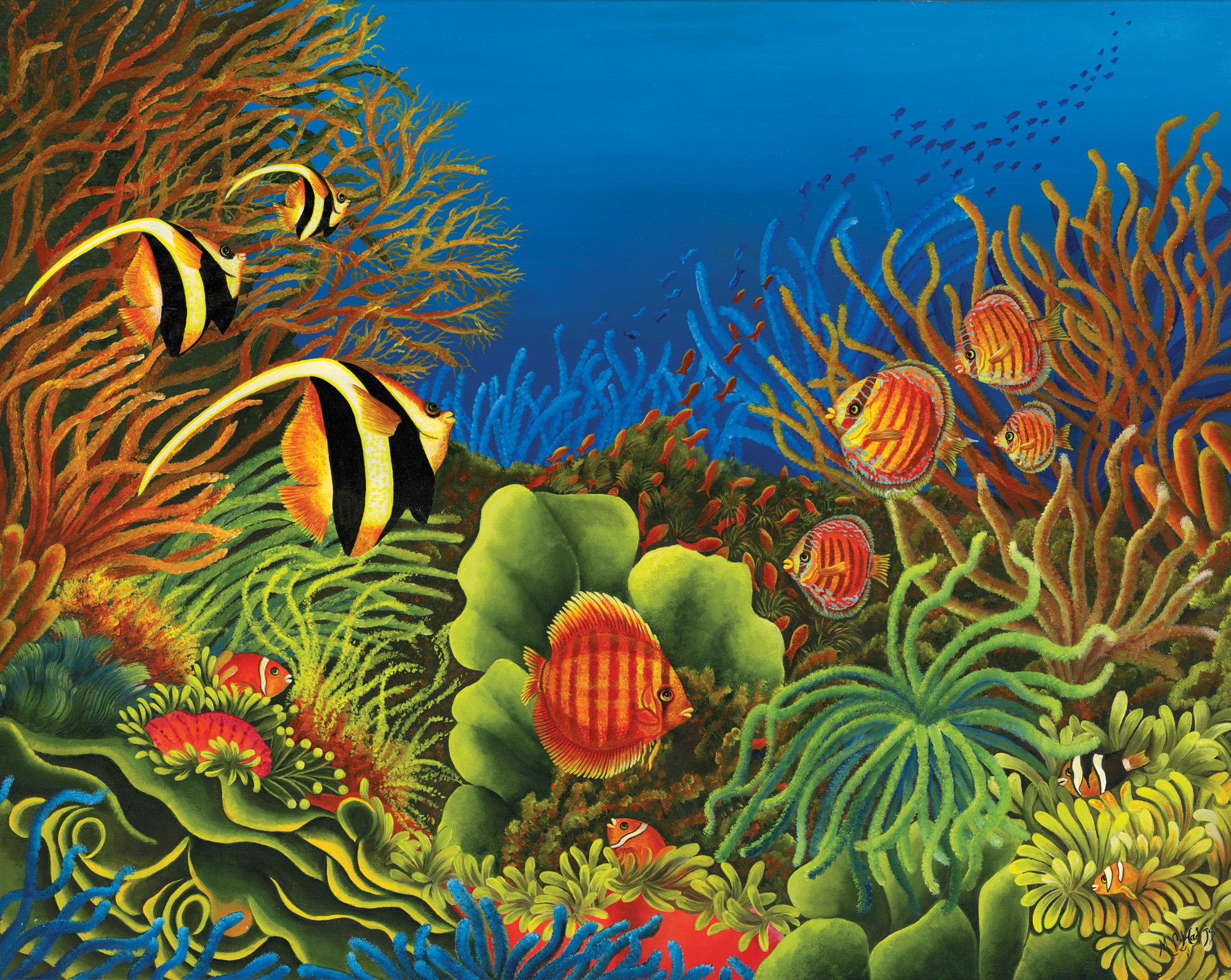 Merveille-des-oceans