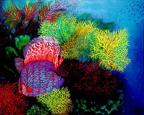 09 coraux &discus