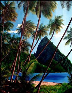 Hawaii Coconuts