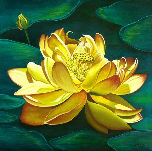 Lotus Sunrise/Canvas Painting/ Giclée/Reproduc