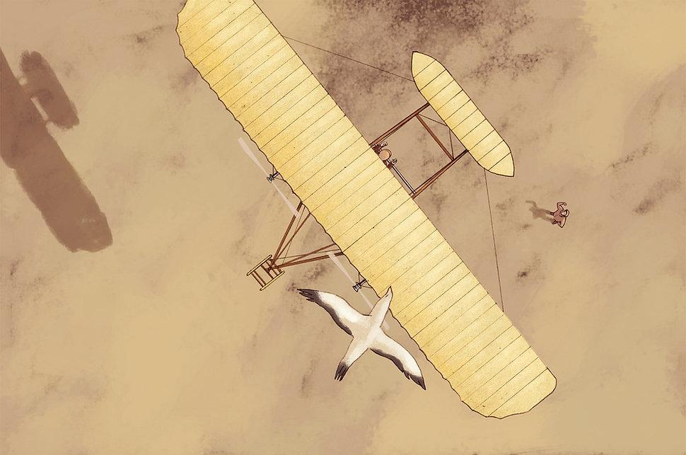 Hubert Warter - Illustration - Flieger - Brüder Wright - Möve - Flugversuch - Aviators - Wright brothers - Seagull - Flight test
