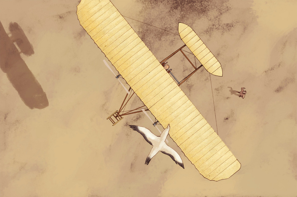 Hubert Warter - Illustration - Flieger - Brüder Wright - Möve - Flugversuch - Aviators - Wright brothers - Seagull - Flight test