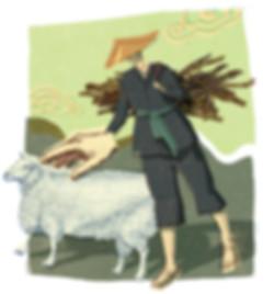 Hubert Warter - Illustration - China - Chinese - Schaf - sheep