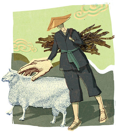 Hubert Warter - Illustration - China - Chinese - Schaf - sheep