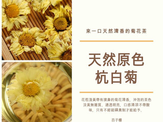 【掌櫃推介】原色杭白菊