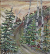 Landscape of pine trees and birch trees in a forest
