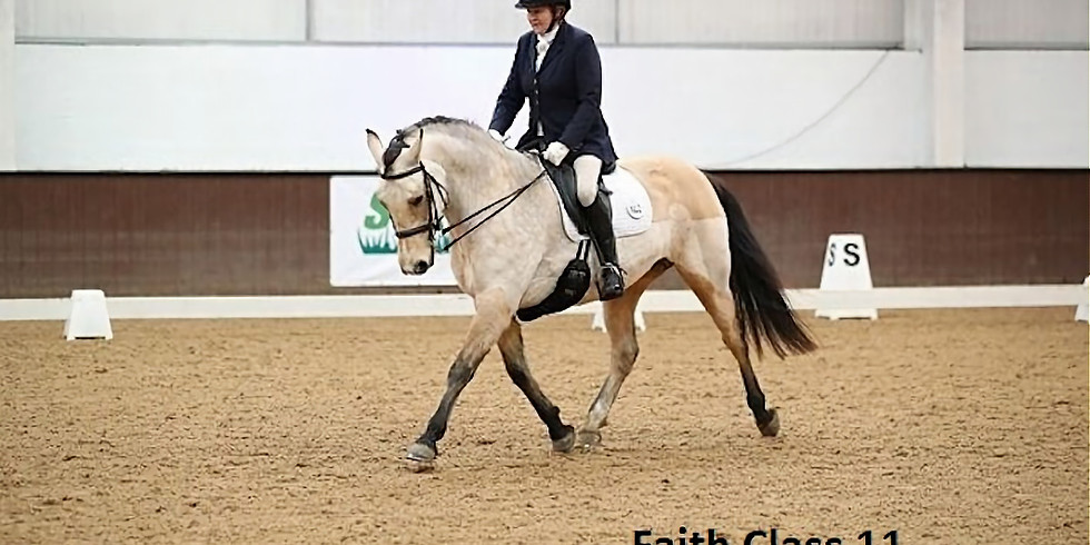DRESSAGE TRAINING WITH TAMSIN ADDISON