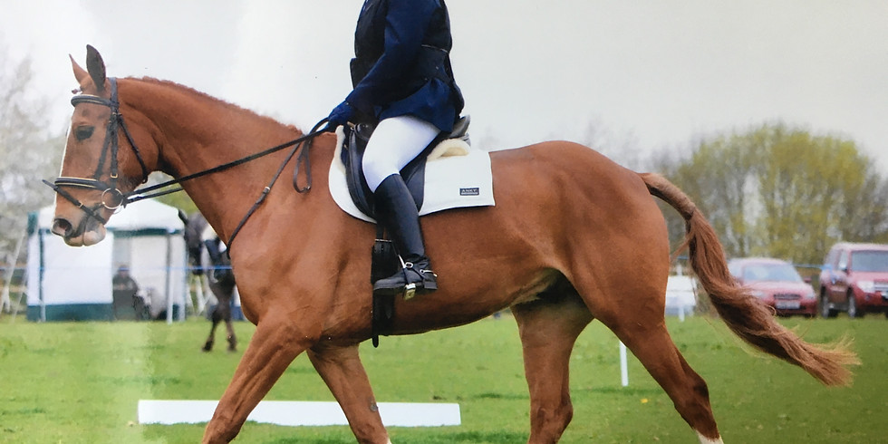 DRESSAGE TEST RIDING WITH TAMSIN ADDISON AND STEPHEN MOORE (Judge)