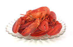 Fresh cooked lobsters